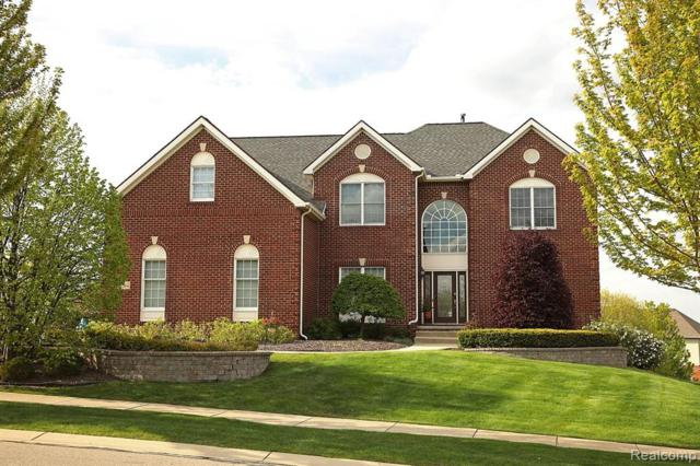 50564 Langley Drive, Novi, MI 48374 (#219044988) :: Team Sanford