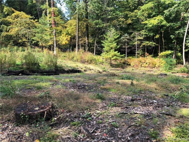 201 Beechview Dr. S Lot #135, Oakland Twp, MI 48306 (#219045007) :: The Alex Nugent Team | Real Estate One