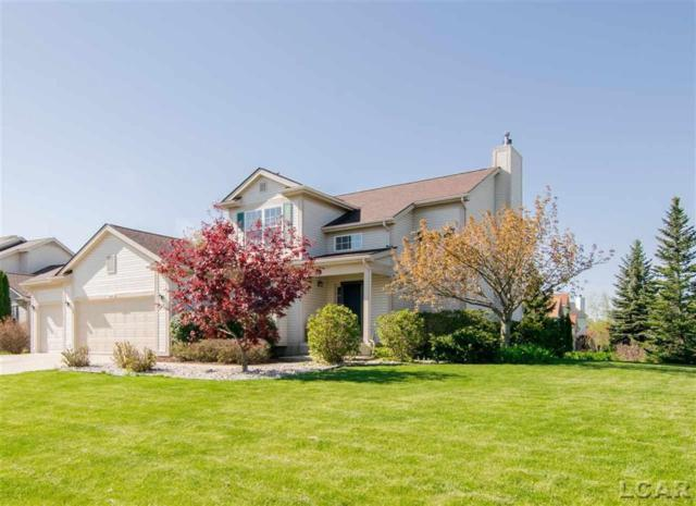 4662 Carter Place, Pittsfield Twp, MI 48197 (MLS #56031380051) :: The Toth Team