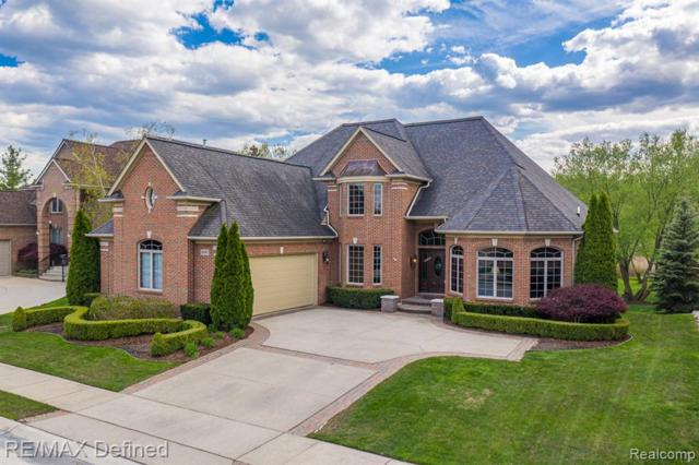 20007 Blackfoot Drive, Clinton Twp, MI 48038 (#219045679) :: The Alex Nugent Team | Real Estate One
