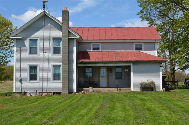 7440 Jacoby Rd, Otisco Twp, MI 48809 (MLS #59019021298) :: The Toth Team