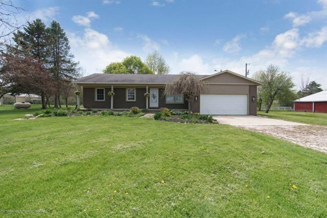 14100 Clintonia Road, Danby Twp, MI 48837 (MLS #630000236629) :: The Toth Team