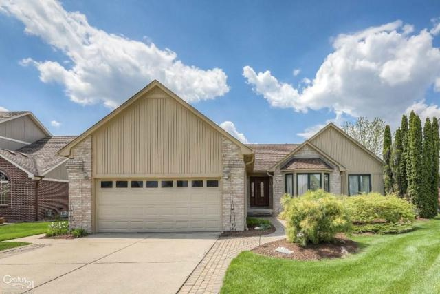 53865 Orson, New Baltimore, MI 48047 (MLS #58031380378) :: The Toth Team