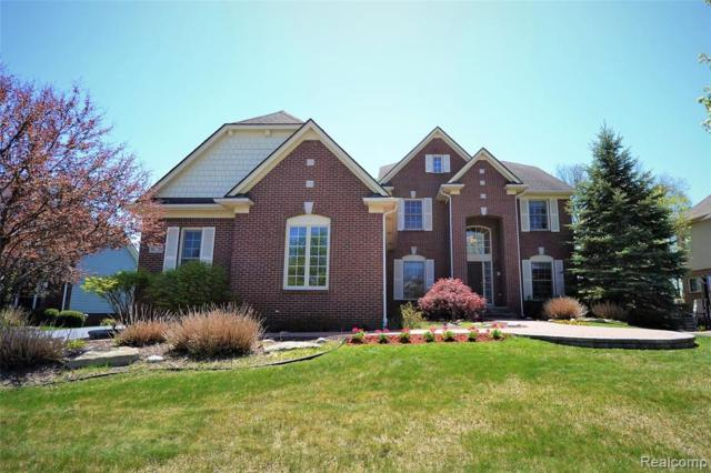 30220 Sterling Drive, Novi, MI 48377 (#219046415) :: Team Sanford