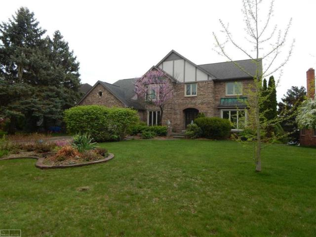 48285 Lake Land Dr., Shelby Twp, MI 48317 (MLS #58031380407) :: The Toth Team
