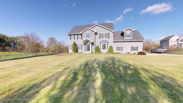 14625 Wacousta Road, Watertown Twp, MI 48837 (MLS #630000236665) :: The Toth Team