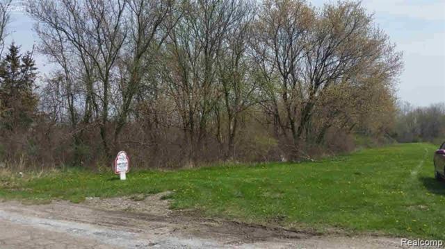 0 Sunnyside Drive, Flushing, MI 48433 (#219046579) :: The Buckley Jolley Real Estate Team