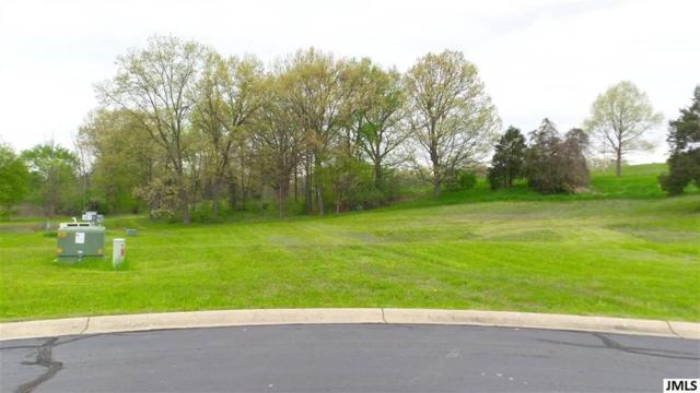 Lot 45 Coronado Dr, Leoni, MI 49201 (#55201901704) :: Novak & Associates