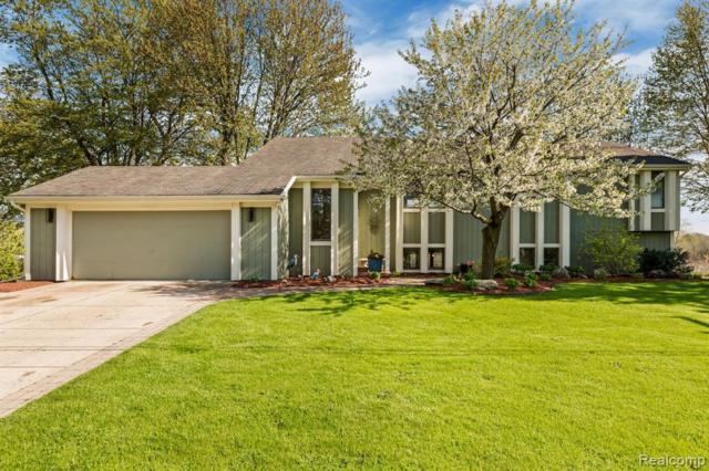 2815 Candlewick Drive, Orion Twp, MI 48359 (#219047029) :: GK Real Estate Team