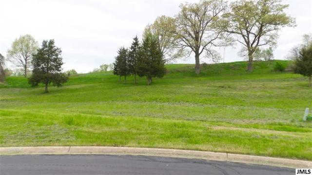 Lot 46 Coronado Dr, Leoni, MI 49201 (#55201901706) :: Novak & Associates