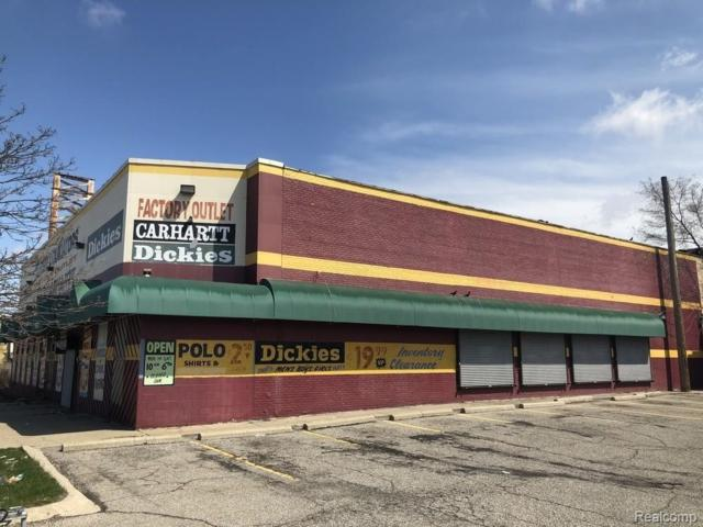 16870 Schaefer Highway, Detroit, MI 48235 (MLS #219047077) :: The Toth Team
