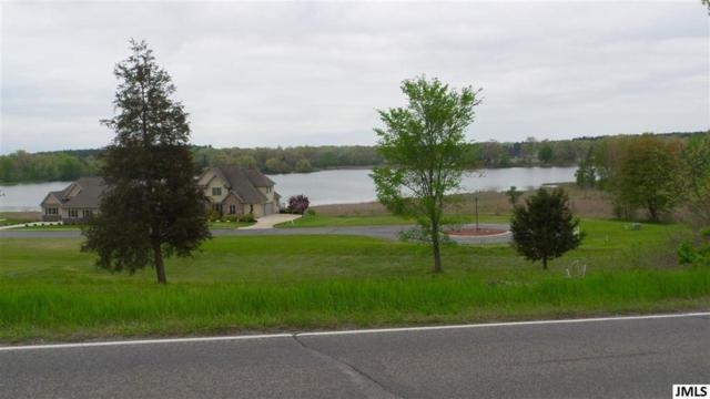 Lot 48 Napoleon Rd, Leoni, MI 49201 (#55201901708) :: Novak & Associates