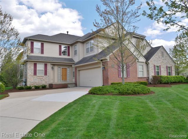3793 Winding Brook Circle, Rochester Hills, MI 48309 (#219047275) :: Team DeYonker