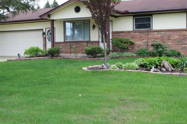 49545 Schoenherr, Shelby Twp, MI 48315 (#58031380636) :: The Alex Nugent Team | Real Estate One