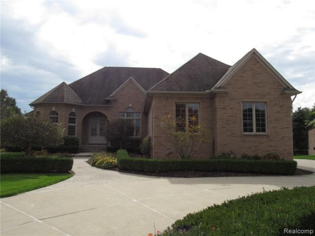 6084 Adams Court, Washington Twp, MI 48094 (#219047434) :: RE/MAX Nexus