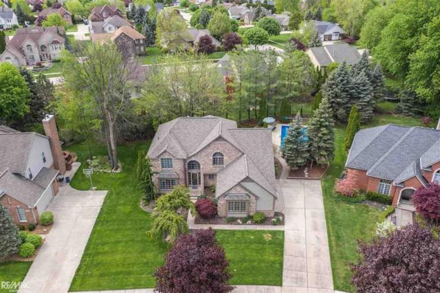 43621 Trillium Dr, Sterling Heights, MI 48314 (#58031380783) :: The Alex Nugent Team | Real Estate One