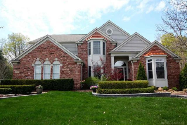 17359 Oak Hill Court, Northville Twp, MI 48168 (#58031380845) :: Duneske Real Estate Advisors