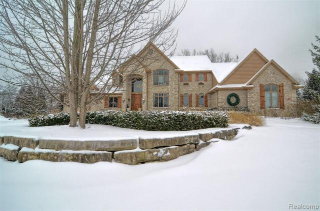 219 Knorrwood Drive, Oakland Twp, MI 48306 (#219048170) :: The Buckley Jolley Real Estate Team