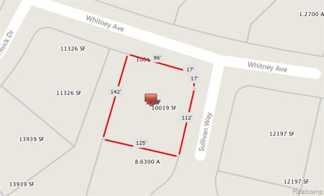 14342 Sullivan Way, Fenton Twp, MI 48451 (#219048259) :: The Buckley Jolley Real Estate Team