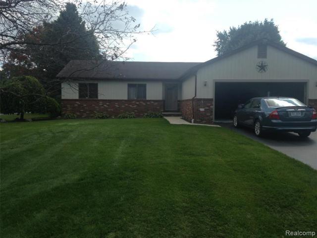 56779 11 MILE Road, Lyon Twp, MI 48165 (#219048260) :: The Buckley Jolley Real Estate Team