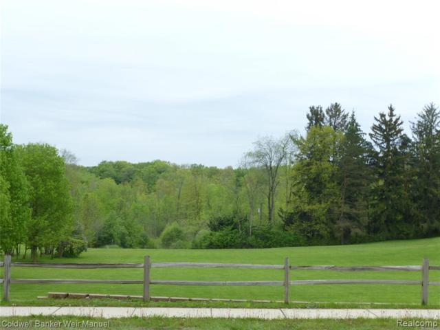 vacant Clarkston Road, Independence Twp, MI 48348 (MLS #219048268) :: The Toth Team
