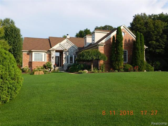 11455 Hammerstone Drive, Green Oak Twp, MI 48178 (#219048366) :: The Buckley Jolley Real Estate Team