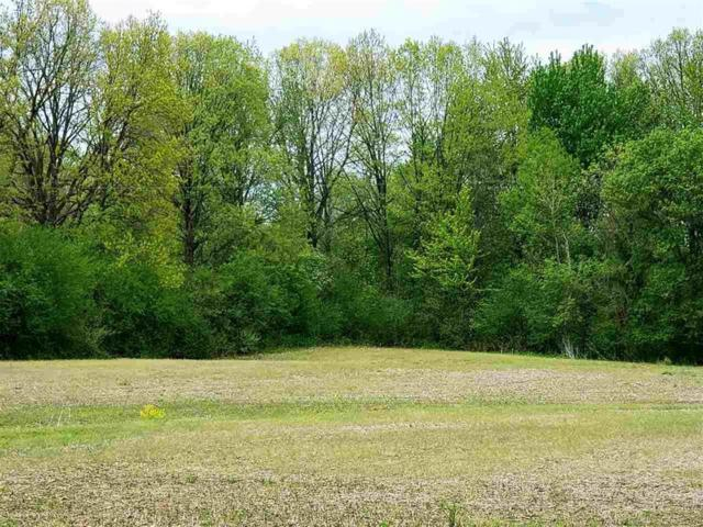 Omo, Richmond Twp, MI 48062 (#58031380956) :: RE/MAX Nexus