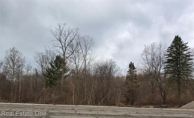 7093 Sashabaw Road, Independence Twp, MI 48348 (#219048583) :: RE/MAX Classic