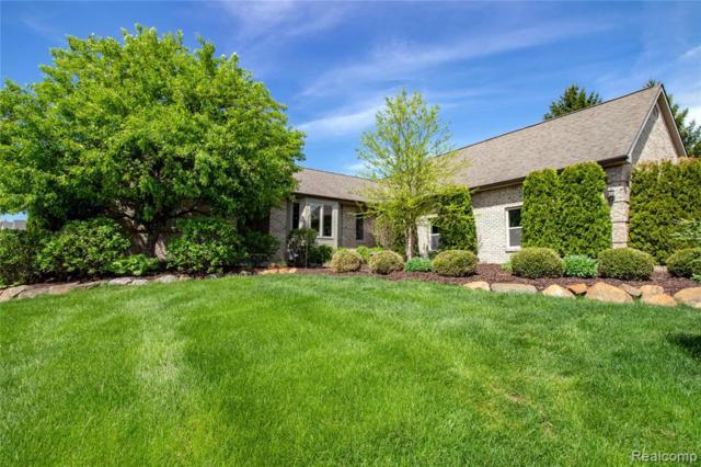 8645 Glen Haven Drive, Hartland Twp, MI 48843 (#219048677) :: The Buckley Jolley Real Estate Team