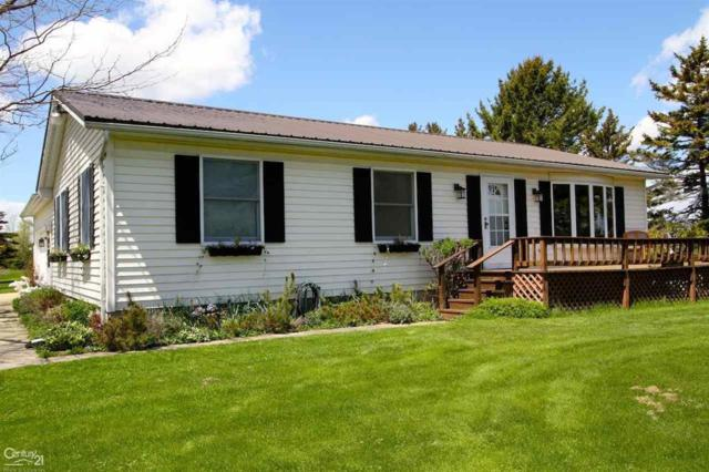 4393 Lakeshore, Forester Twp, MI 48427 (#58031381140) :: The Alex Nugent Team | Real Estate One