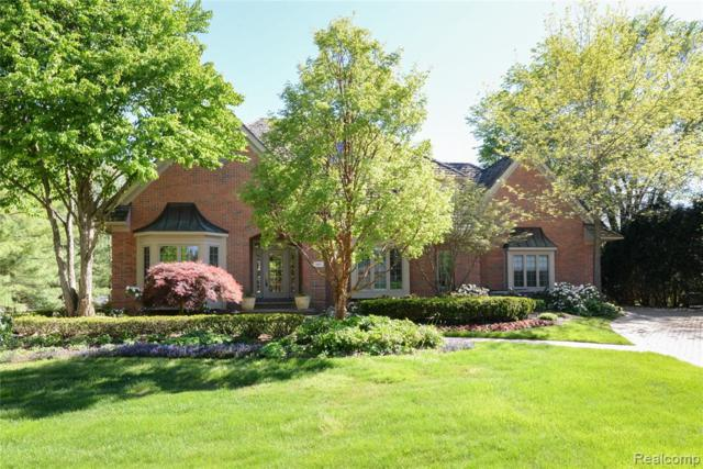 18871 Oak Leaf Lane, Northville Twp, MI 48168 (MLS #219049055) :: The Toth Team