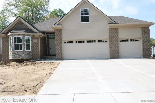 34378 Ann Arbor Trail, Livonia, MI 48150 (#219049135) :: The Alex Nugent Team | Real Estate One