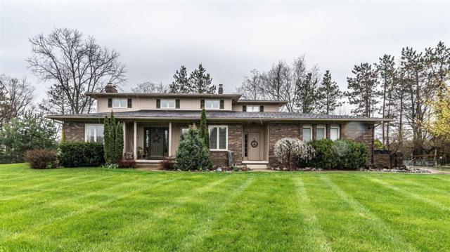 6708 Strawberry Lake Road, Hamburg, MI 48189 (#543265696) :: The Buckley Jolley Real Estate Team