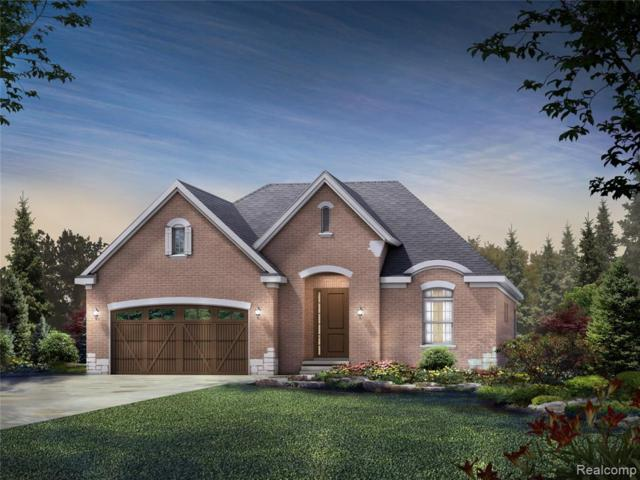 24568 Pinnacle Circle, Lyon Twp, MI 48178 (#219049801) :: The Alex Nugent Team | Real Estate One