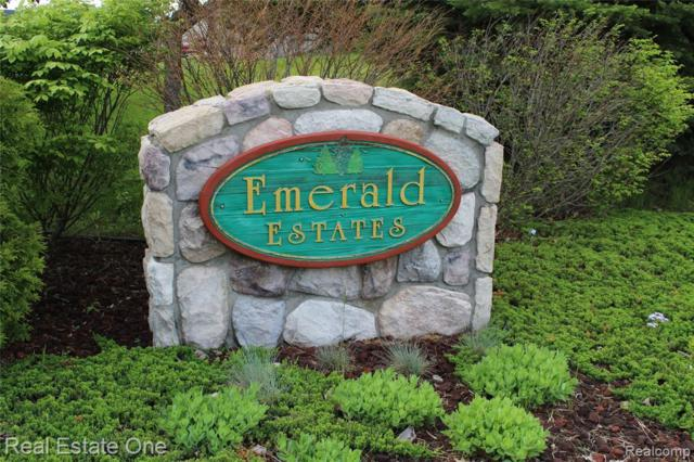 Lot 50 Emerald Valley Circle W, Handy Twp, MI 48836 (MLS #219050408) :: The Toth Team