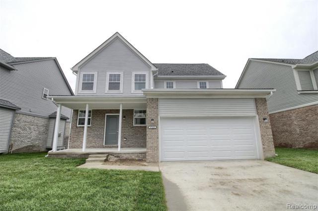 47631 Viola Lane, Chesterfield Twp, MI 48047 (#219050556) :: The Alex Nugent Team   Real Estate One