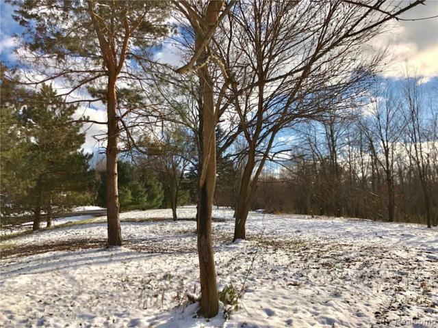 VL H-2 S Timber Ridge Drive W, Metamora Twp, MI 48455 (#219051470) :: The Buckley Jolley Real Estate Team