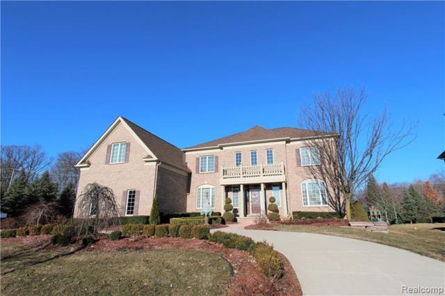50861 Chesapeake Drive, Novi, MI 48374 (#219051644) :: The Alex Nugent Team   Real Estate One