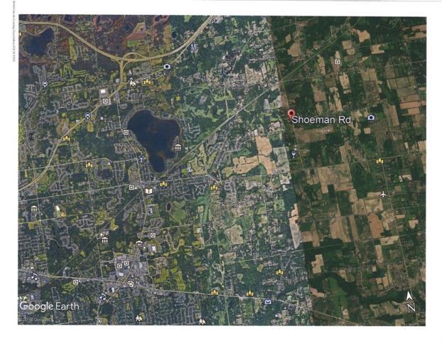 0 Shoeman Road, Williamstown Twp, MI 48840 (MLS #630000237137) :: The Toth Team