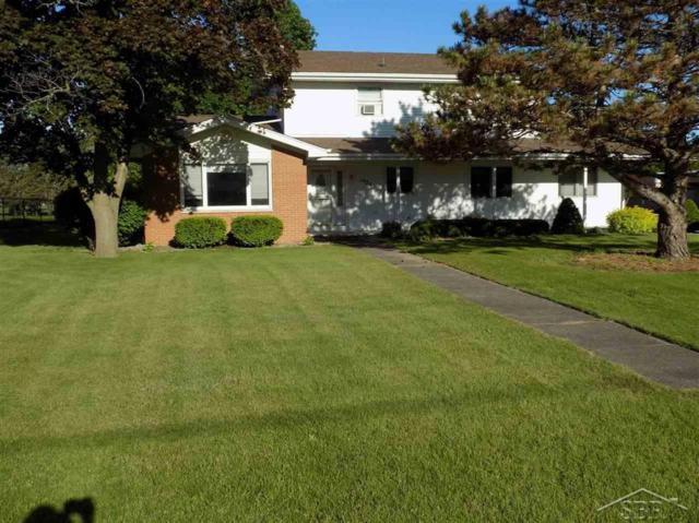 1946 S Reese Road, Blumfield Twp, MI 48757 (MLS #61031382160) :: The Toth Team