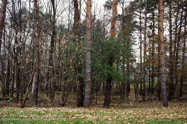 Lot 22 Baywater Drive, Delta Twp, MI 48911 (MLS #630000237177) :: The Toth Team