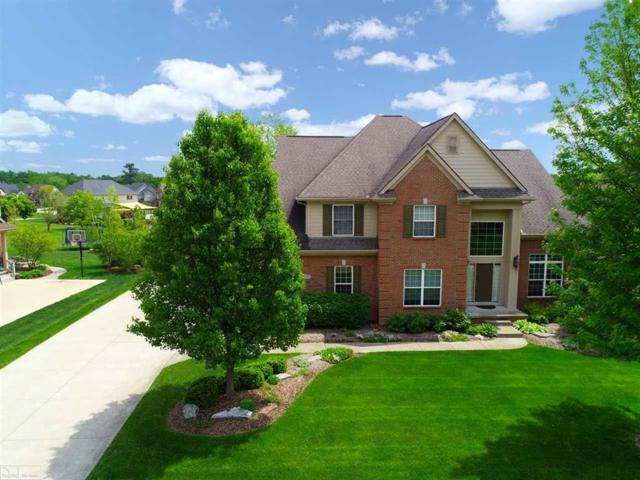 3977 High Grove Way, Lake Orion, MI 48360 (#58031382537) :: Team Sanford