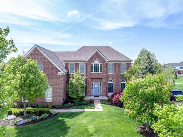 24407 Bellingham Drive, Novi, MI 48374 (#219053804) :: The Alex Nugent Team   Real Estate One