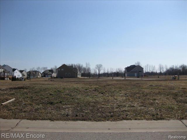 0 Kildare Drive, Davison Twp, MI 48423 (#219053875) :: The Buckley Jolley Real Estate Team