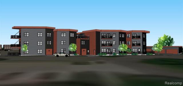 293 N Second Street #107, Brighton, MI 48116 (#219054406) :: The Alex Nugent Team | Real Estate One