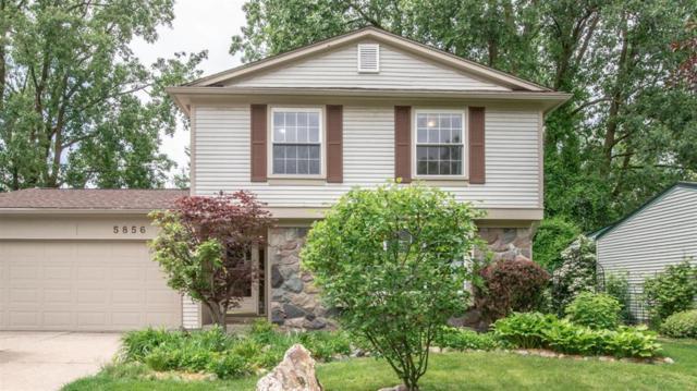 5856 Meadowview Street, Ypsilanti, MI 48197 (#543266016) :: The Alex Nugent Team | Real Estate One