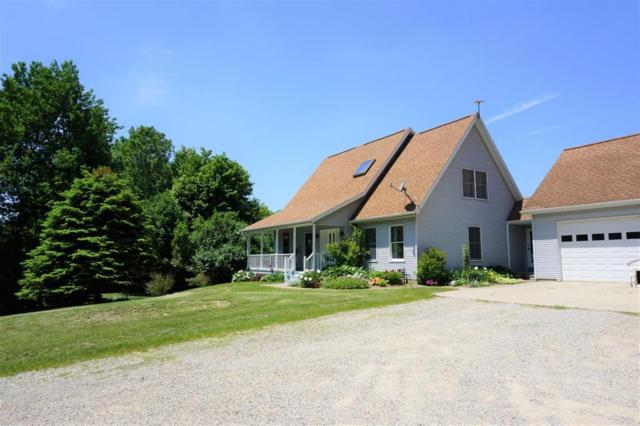 4746 Mauck Road, Adams Township, MI 49242 (#543266137) :: The Alex Nugent Team | Real Estate One