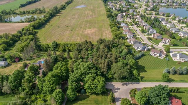 0 W Herbison Road, Watertown Twp, MI 48820 (#630000237428) :: GK Real Estate Team