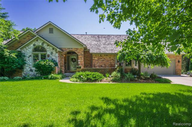 16485 Dusklight Drive, Fenton Twp, MI 48430 (MLS #219055402) :: The John Wentworth Group