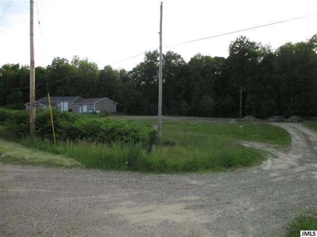 0 Ann Arbor Rd, Leoni, MI 49201 (#55201902005) :: Keller Williams West Bloomfield